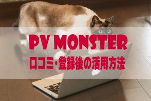 pvmonster