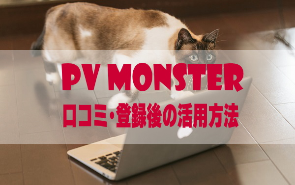 PVモンスターの2ch口コミと評判は?審査に合格したので仕組と記事作成に関しても説明する
