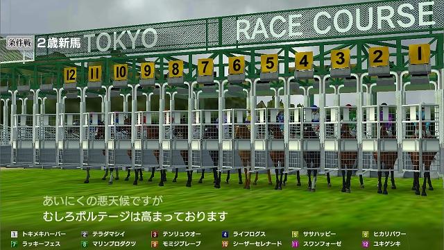 レース開始の待機画像