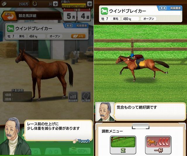 競走馬の調教シーン
