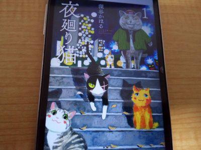 夜回り猫の表紙