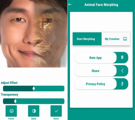Animal Face Morphing Photo Editorのモーフィング画像