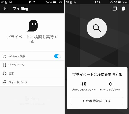 lnPrivate 検索をONにした状態